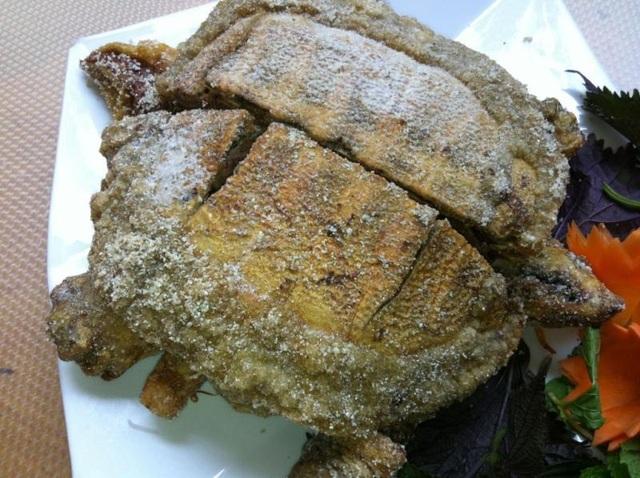 Về Cà Mau thưởng thức đặc sản rùa rang muối | Báo Dân trí