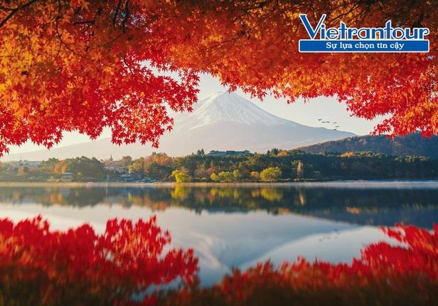 4 điểm đến phải đến vào mùa thu ở Nhật Bản - 2