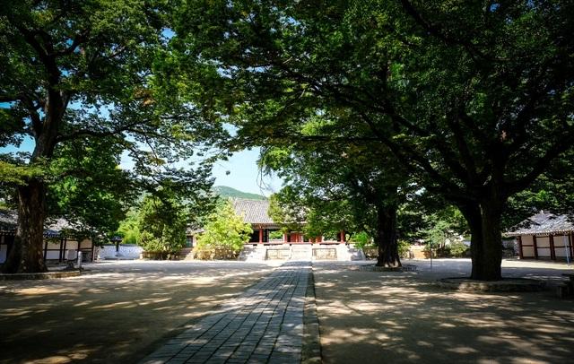 Mùa thu thơ mộng ở Triều Tiên qua góc máy du khách Việt - 4