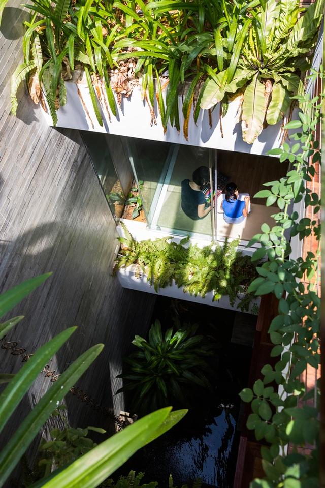 Vấn đề này đã được các kiến trúc sư giải quyết bằng cách tạo ra một khu vườn theo chiều dọc ở ngay trung tâm của ngôi nhà.