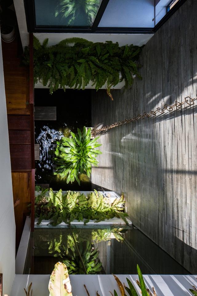 Cấu trúc độc đáo của ngôi nhà như một công viên được thiết kế dạng thẳng đứng.