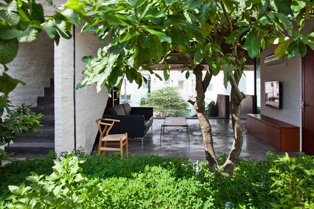 Toàn bộ ngôi nhà được hưởng bầu không khí tự nhiên, gió trời và cây xanh
