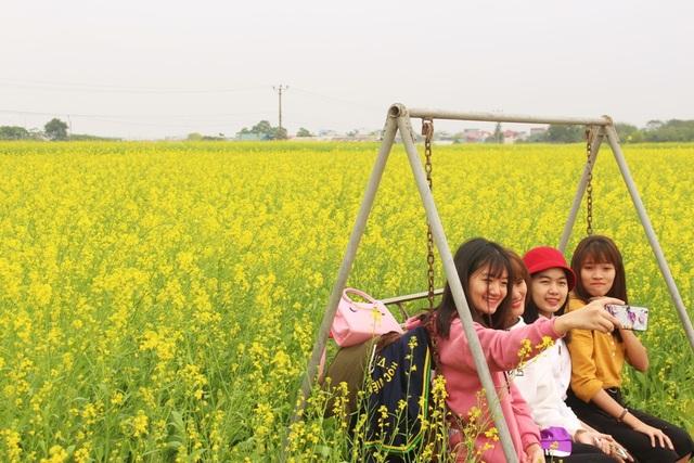 Ngẩn ngơ giữa cánh đồng cải vàng sưởi ấm trời đông Hà Nội - 3