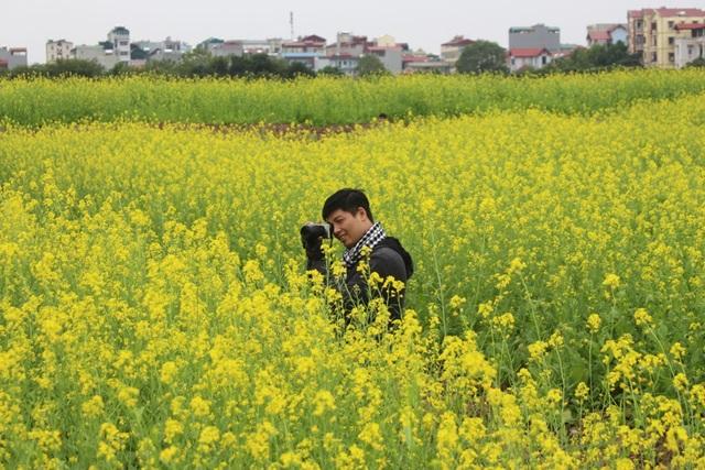 Ngẩn ngơ giữa cánh đồng cải vàng sưởi ấm trời đông Hà Nội - 9