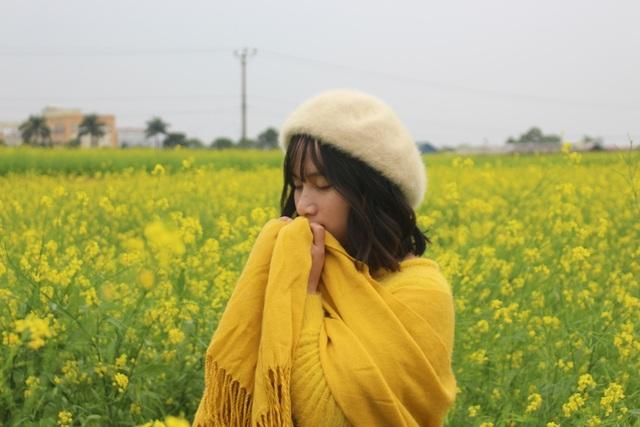 Ngẩn ngơ giữa cánh đồng cải vàng sưởi ấm trời đông Hà Nội - 12