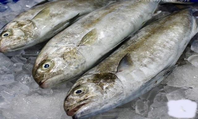 """Nhiều du khách đến Đà Nẵng rất """"nghiền"""" đặc sản cá cu."""