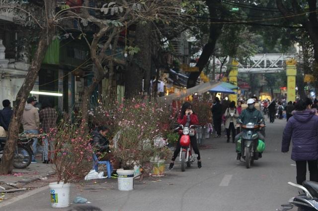 Chợ hoa Hàng Lược thường họp từ sáng sớm tới tận đêm khuya. (Ảnh: H.N)