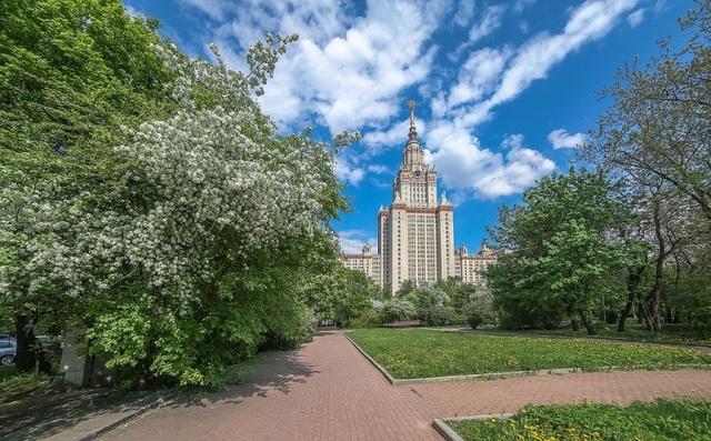 Vườn hoa táo nở rộ trong trường đại học Tổng hợp Moscow