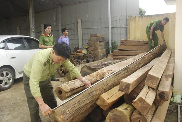 Số gỗ tang vật lực lượng chức năng thu giữ
