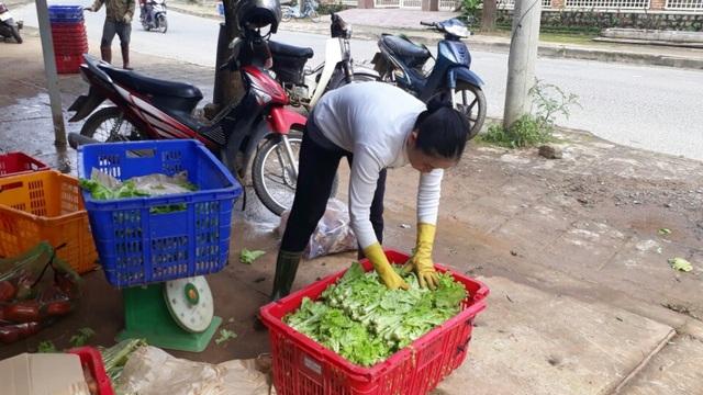 Thủ phủ rau Lâm Đồng đang khan hiếm rau trầm trọng