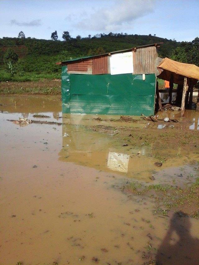 Nhiều căn nhà bị ngập sâu trong nước
