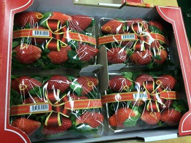 Dâu tây Hàn Quốc được bày bán tràn lan ở Hà Nội