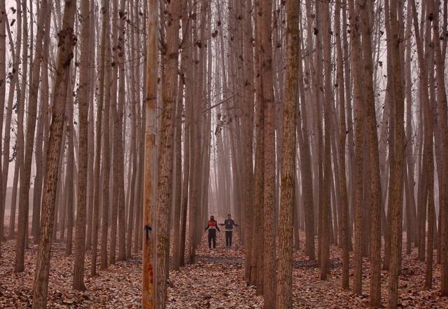 Người dân tập thể dục buổi sáng trong tiết trời mùa đông giá lạnh ở ngoại ô Srinagar, Kashmir, Ấn Độ. (Ảnh: Reuters)