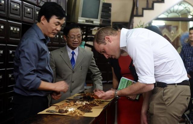 Sau các cuộc gặp với các nhà lãnh đạo Việt Nam, Hoàng tử William đã có chuyến di dạo phố cổ Hà Nội và ghé thăm một cửa hàng bán thuốc bắc trên phố Lãn Ông. (Ảnh: Reuters)