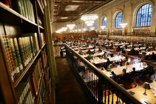 Bức ảnh được cho là chụp ở thư viện Lamont - ĐH Harvard lúc 4h30 sáng. Tuy nhiên nhiều SV cho rằng bức ảnh này thực chất là thư viện công cộng New York.