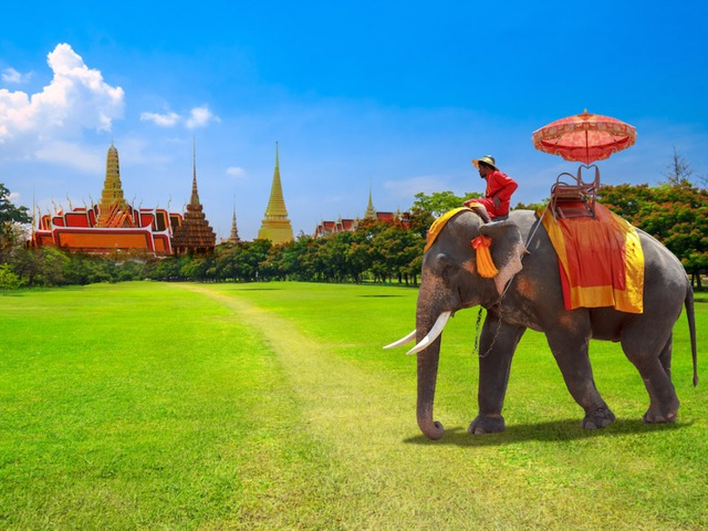Đừng quên tour tham quan với voi. Voi là loài động vật mang tính biểu tượng ở quốc gia này. Du khách có thể tiếp xúc với những chú voi đã thuần chủng ở nhiều công viên trên khắp đất nước.
