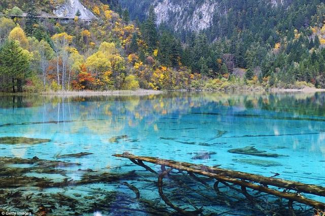 Hồ Peakcock là một trong các hồ nước nổi tiếng thuộc danh thắng Cửu Trại Câu, nằm tại phía tây nam Trung Quốc. Nơi này quyến rũ vào tất cả các mùa trong năm, đặc biệt là mùa thu khi dòng nước trong veo, có thể nhìn thấu xuống đáy và hàng cây chuyển lá nhuộm màu sặc sỡ.