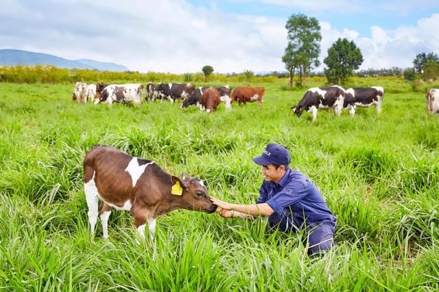 Vinamilk đã hoàn tất việc chứng nhận và đưa vào hoạt động trang trại bò sữa organic đầu tiên tại Việt Nam theo chuẩn Châu Âu tại tỉnh Lâm Đồng. Dự kiến vào giữa tháng 12/2016, Vinamilk sẽ cho ra mắt sản phẩm sữa tươi organic cao cấp đầu tiên được sản xuất tại Việt Nam.