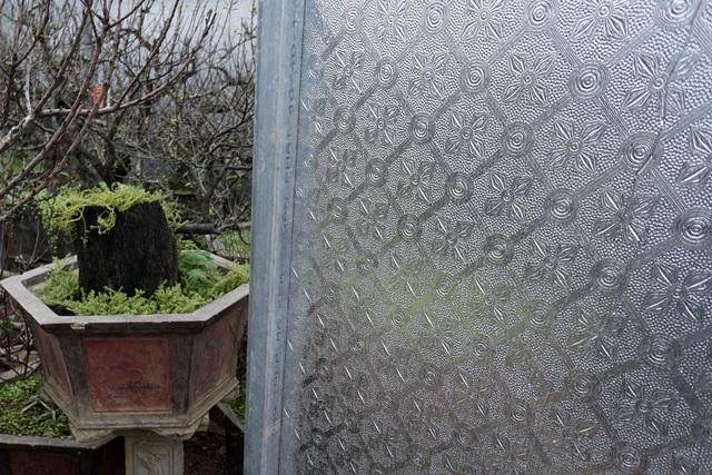 Toàn bộ khu nhà trồng đào được dán phủ một lớp vật liệu phản quang. Ông Hàm cho biết nó có tác dụng tăng ánh sáng và giữ nhiệt. Những khi thời tiết chuyển gió nồm hoặc gió mùa đông bắc tràn về, đó là lúc rất vất vả để điều chỉnh nhiệt độ nhà trồng đào sao cho càng ít thay đổi càng tốt, tránh việc đào nở sớm cũng như thui chột bông hoa.