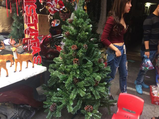 Cây thông bán khá ế tại nhiều cửa hàng ở Hà Nội