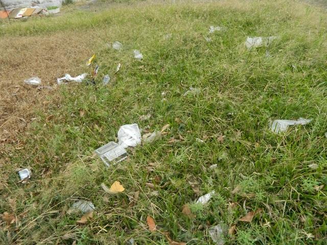 Rác vứt la liệt trên những khu vực đất trống quanh khu chung cư Phúc Đồng.