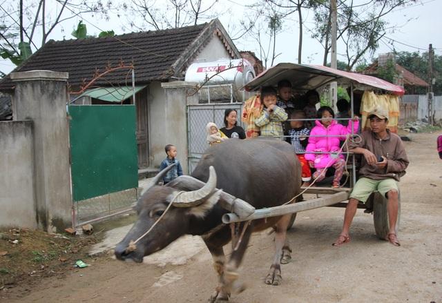 Chiếc xe trâu đưa đón học sinh của anh Văn Đình Ngọc.