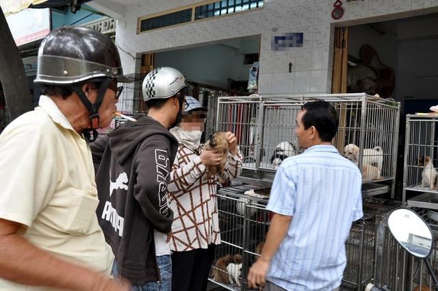 Khách giao dịch mua bán chó tại một cửa hàng chó cảnh
