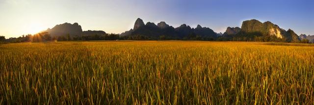 Bản Giốc được ví giống như Vịnh Hạ Long trên cạn, chỉ khác màu lúa vàng thay cho biển xanh