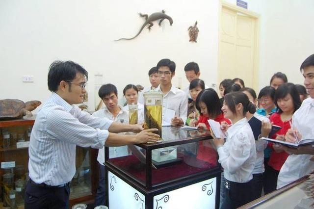 Quan sát tiêu bản động vật trong phòng triển lãm và lưu trữ