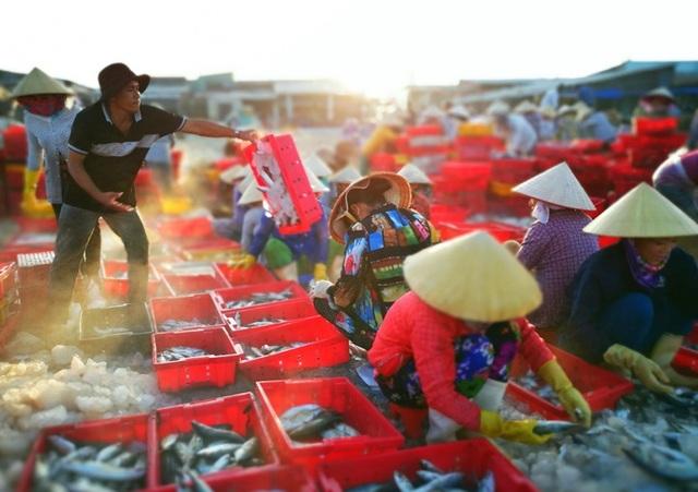 Dấu hiệu của bình minh có lẽ là nhịp sống bận rộn nơi các chợ cá ven biển. Tiếng nói cười, tiếng rao bán hoà lẫn cùng mùi vị đặc trưng của cá biển, làm nên dấu ấn khó quên cho nhiều người. (Ảnh dự thi của Trần Phương).