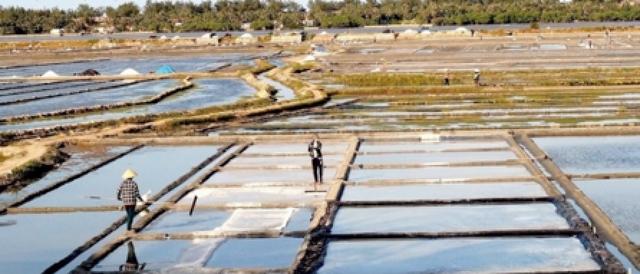 Ngỡ ngàng với vẻ đẹp của những cánh đồng muối Việt Nam - 4