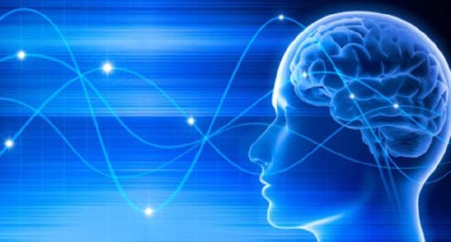 Các nhà khoa học khám phá liệu pháp điều trị bệnh não mới - 1