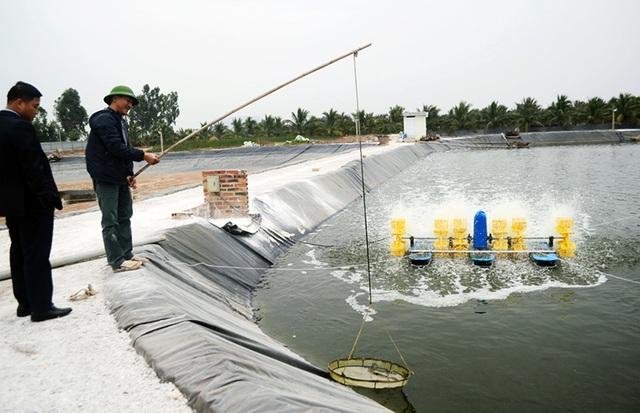 Uông Bí: Dành nguồn lực đầu tư cho nông nghiệp - 1