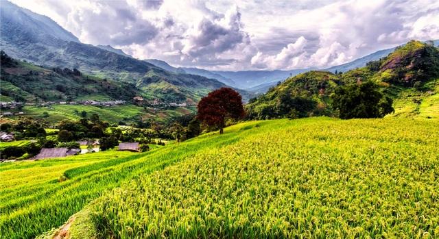 Tiềm năng phát triển du lịch tại Việt Nam rất lớn nhưng phát triển chưa tương xứng