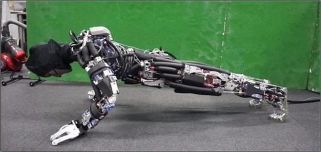 Kengoro đang thực hiện các động tác chống đẩy. Ảnh: ĐH Tokyo/ YouTube/IEEE Spectrum