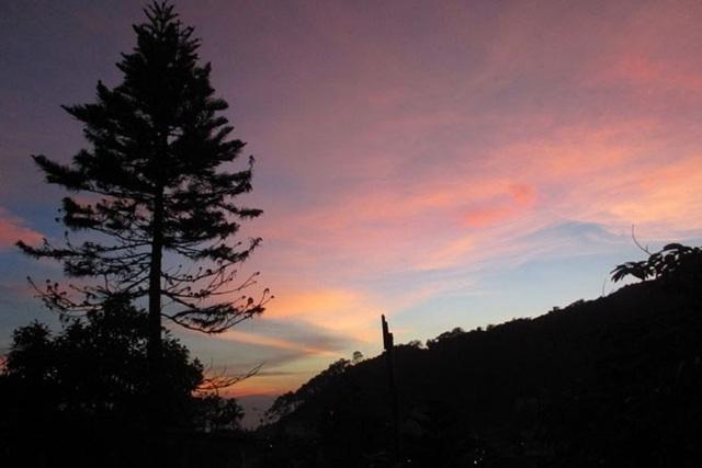 Bất cứ lúc nào, dù là hoàng hôn hay bình minh, Tam Đảo cũng mang một vẻ đẹp thơ mộng đến say lòng người.