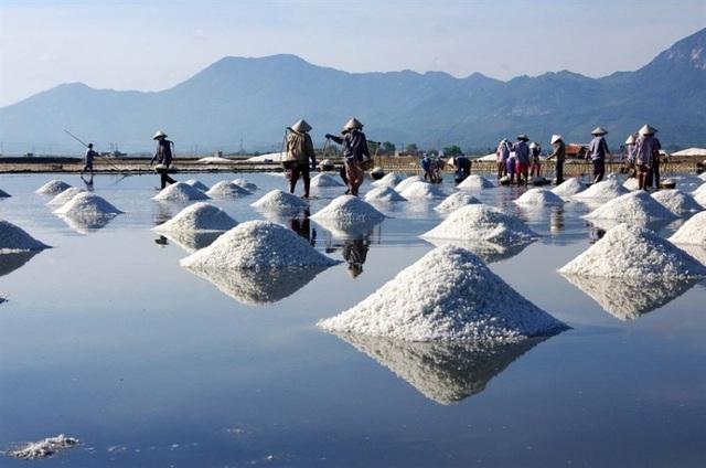 Muối Cà Ná được giới chuyên môn đánh giá là loại muối tốt nhất ở Đông Nam Á.