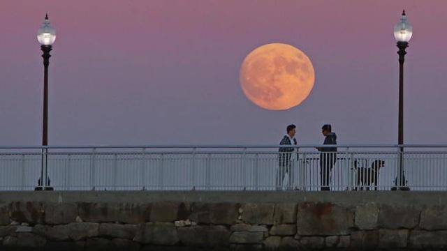 Người dân ngắm siêu trăng ở Công viên Fort Taber, New Bedford, Massachusetts, Mỹ (Peter Pereira)