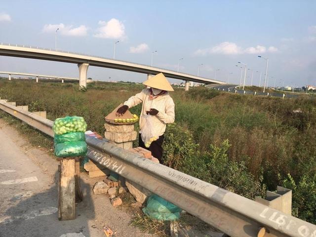 Giá ổi bán buôn hay bán lẻ tại vườn cũng biến động theo mùa, làng Đông Dư có duy nhất một loại ổi găng và chính vụ rơi vào thời điểm tháng 7 âm lịch và tháng 2 âm lịch hàng năm.