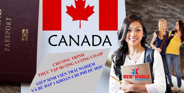 Chọn du học Canada 2016 với nhiều chính sách thuận lợi - 4