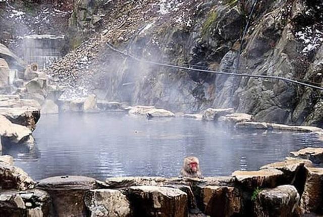 Những suối nước nóng nổi tiếng nhất Việt Nam - 4