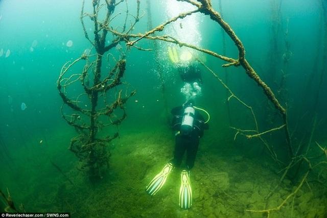 Khám phá nhà tù Rummu - Điểm đến ưa thích của thợ lặn thế giới - 7