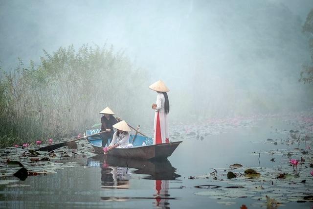 Cánh đồng hoa súng đẹp lung linh ở suối Yến. Ảnh: Nguyễn Đình Thành.