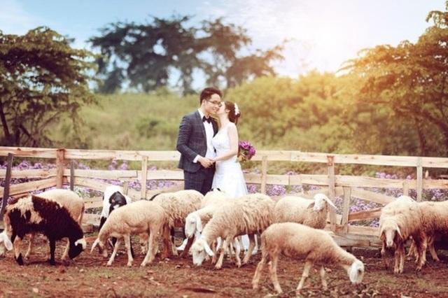 Nhiều bạn trẻ đến chụp ảnh cưới