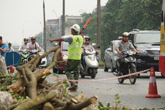 Luôn có người túc trực để cảnh báo người tham gia giao thông qua khu vực cắt tỉa cây xanh
