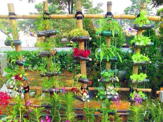 Qua bàn tay khéo léo và sự sáng tạo của người trồng, chúng ta đã có những khu vườn vừa đẹp, vừa có rau sạch để ăn