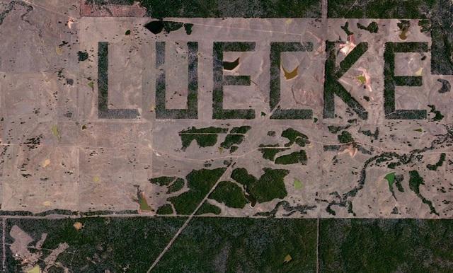 Những đài tưởng niệm có hình dáng rừng cây độc đáo trên thế giới - 7