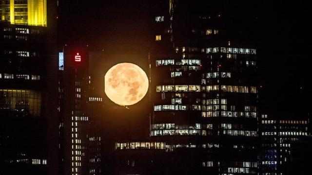 Siêu trăng ở Frankfurt am Main, Đức (Frank Rumpenhorst)