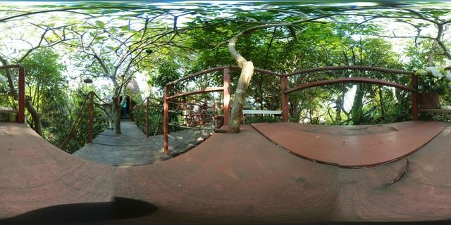 """[Ảnh 360 độ] Kỳ dị nhà trên... cây """"chẳng giống ai"""" ở Hà Nội - 6"""