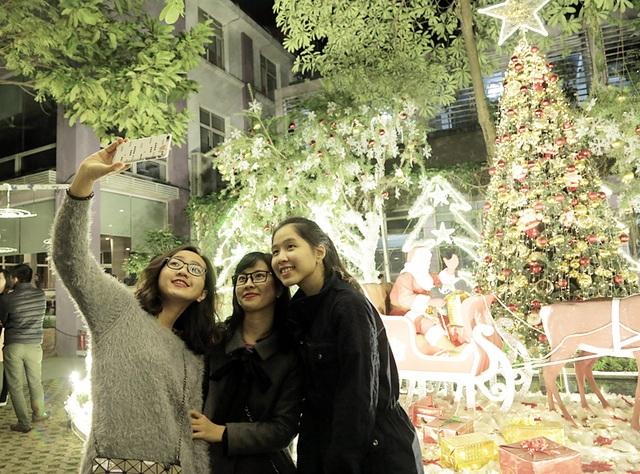 Ngỡ ngàng vườn Giáng sinh lung linh trong trường Đại học - 8